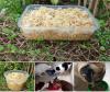 อาหารสุขภาพสำหรับหมาแมว